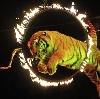 Цирки в Байкале