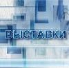 Выставки в Байкале